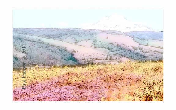 Digital art print of wildflowers with Mt Adams that has been manipulated to give it a lithographic look.  Printed on archival, high quality paper.